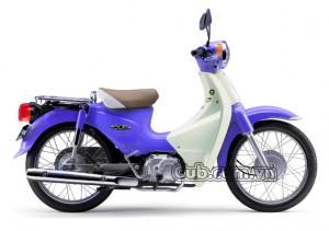 Xe máy cub 81 màu xanh cửu long