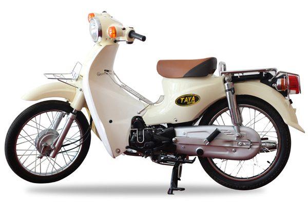CUB-81-TAYA-MAU-KEM