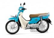 cub.com.vn-xe-cub-82-dealim-mau-da-troi2