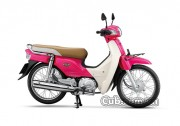 cub.com.vn-xe-cub-82-dealim-mau-hong