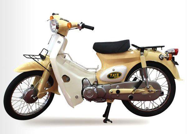 CUB-79-TAYA-mau-kem