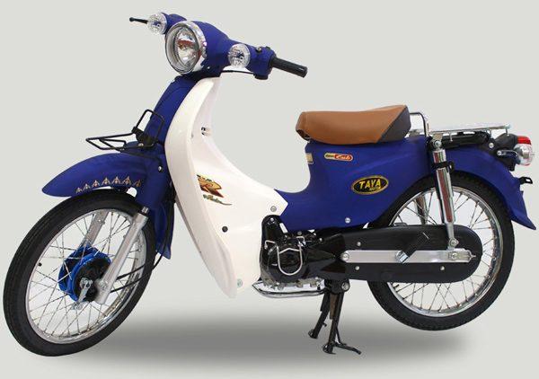CUB-81-TAYA-do-mau-xanh