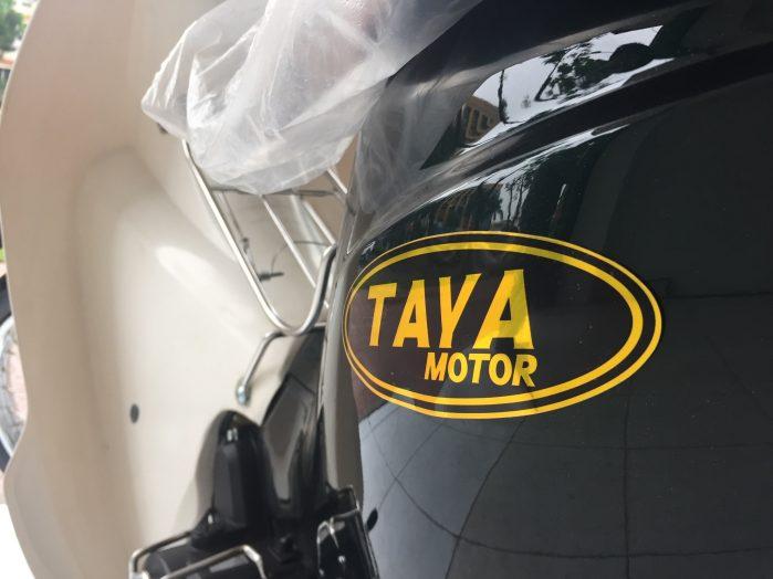 xe cub taya (1)